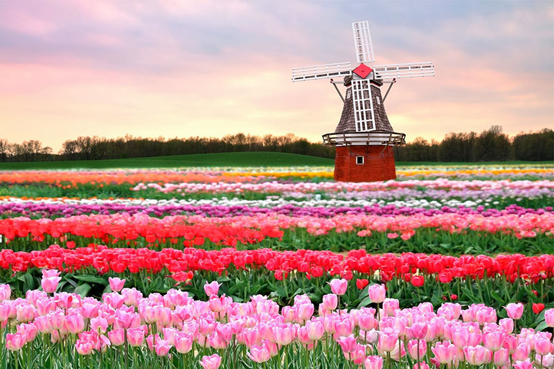 Netherlands Tourist Attractions